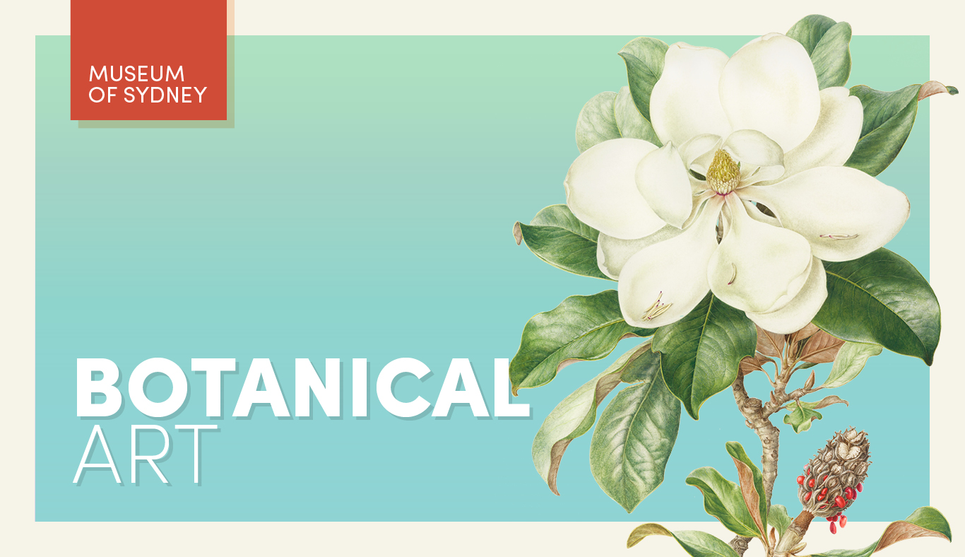Banner for Botanical Art with flower illustration as background.