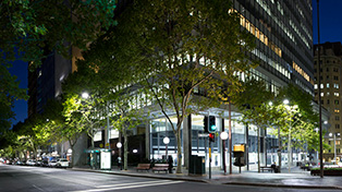 Exterior of bottom floor of illuminated building at top corner of Martin Place with tree in foreground.