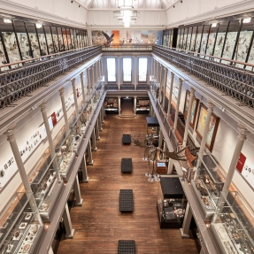 View of the Westpac Long Gallery, Australian Museum