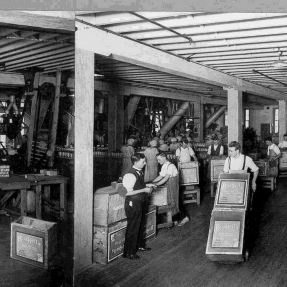 The Bushell's factory in operation in the 1920s