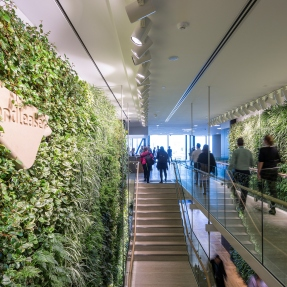 Breathing wall at the entrance of Lendlease's offices at Tower Three International Towers Sydney.