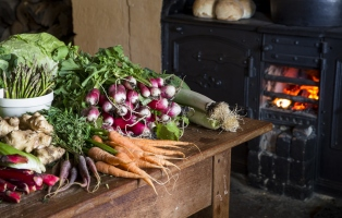 Bunches of fresh vegetables on wooden table.