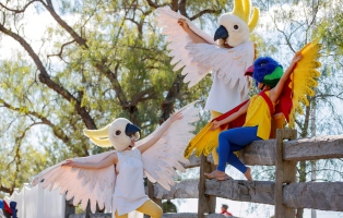 Photograph of Deep Sea performers at Rouse Hill dressed as native Australian birds