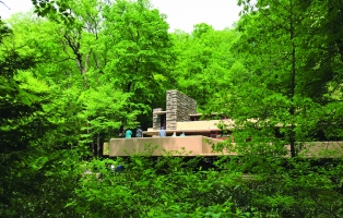 Modernist house set in lush forestlike garden.