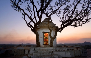 Small structure in tree with sunset behind.