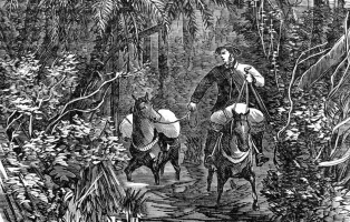 Detail of engraving with man on horseback in bush setting.