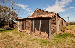 Ramshackle wooden building with tin roof and wire enclosed coop at one end.