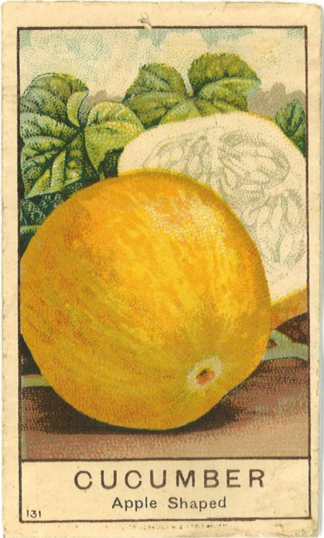 Seed packet cover with image of yellow apple cucumber.