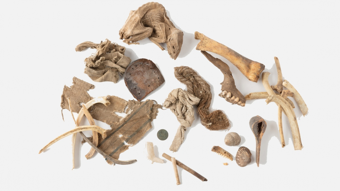Assorted fragments of cloth, bones, teeth, pipes, a rat, shells, rope and a coin found under the floor at Hyde Park Barracks during the Convict period