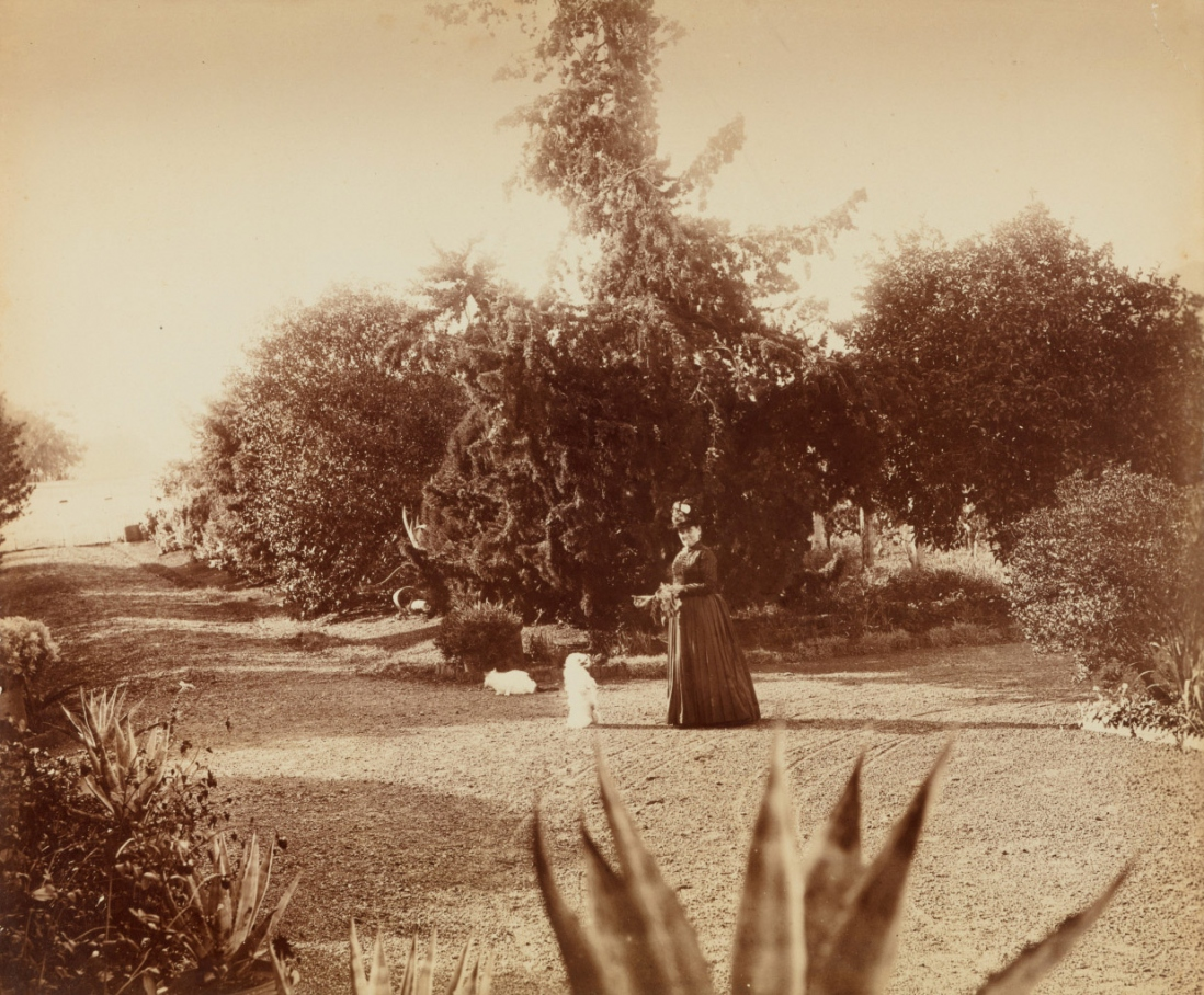 First panel in a five part photographic panorama of Turanville near Scone / photograpjed by Joseph Check, 1889