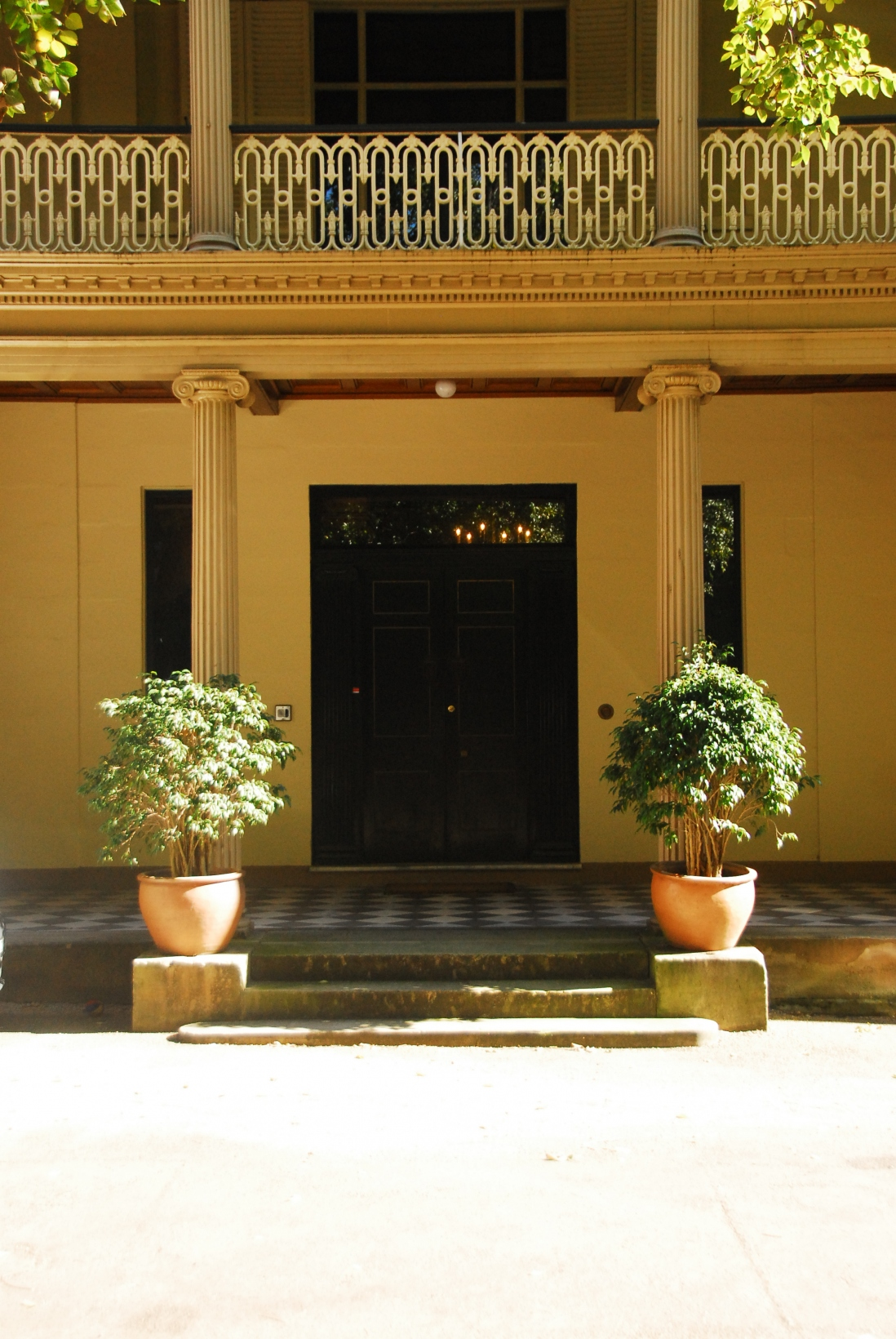 Front entrance to building flanked by columns, with two matching bushes in pots in front.