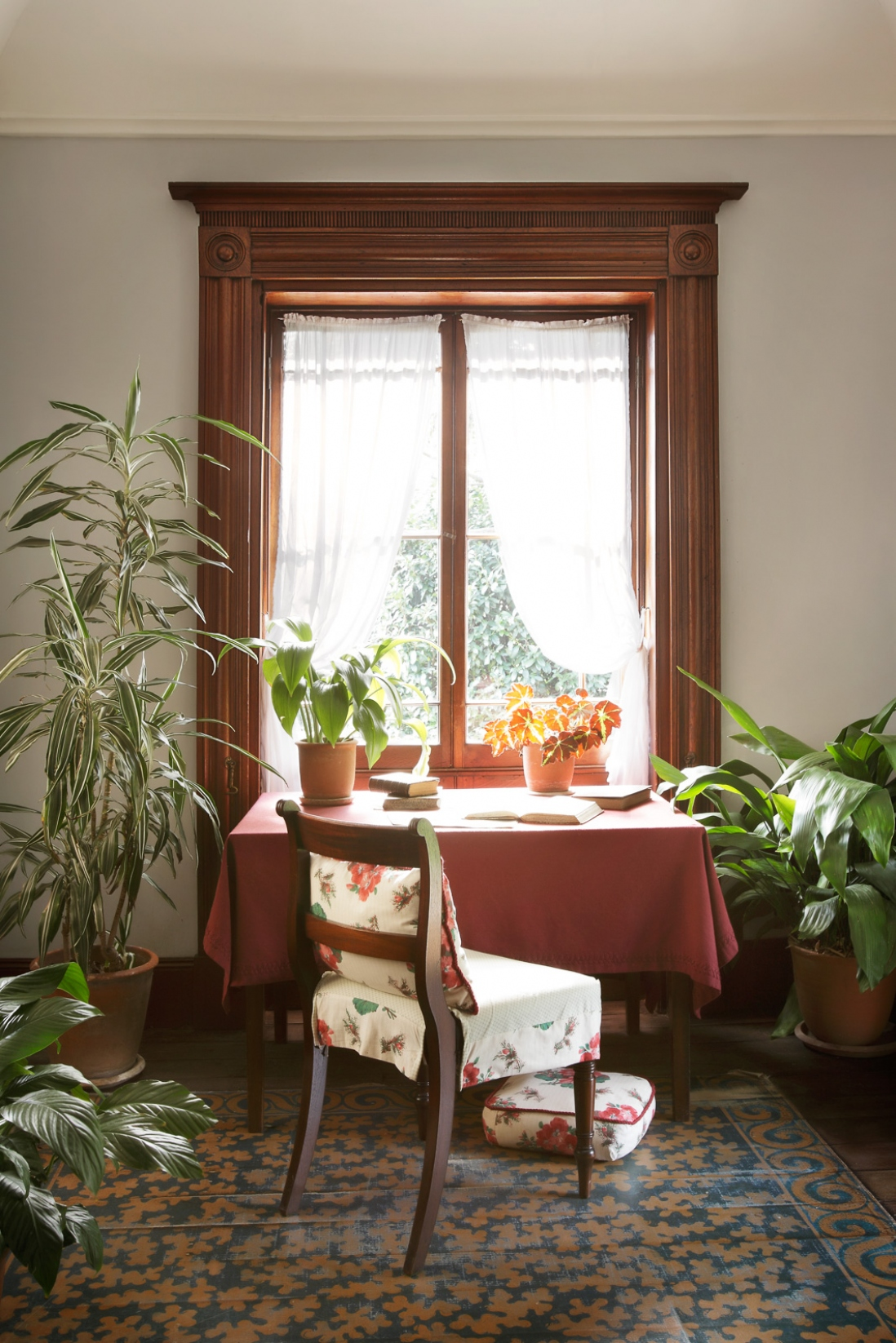 Chair at desk in front of sunny window, with potted plants to either side.