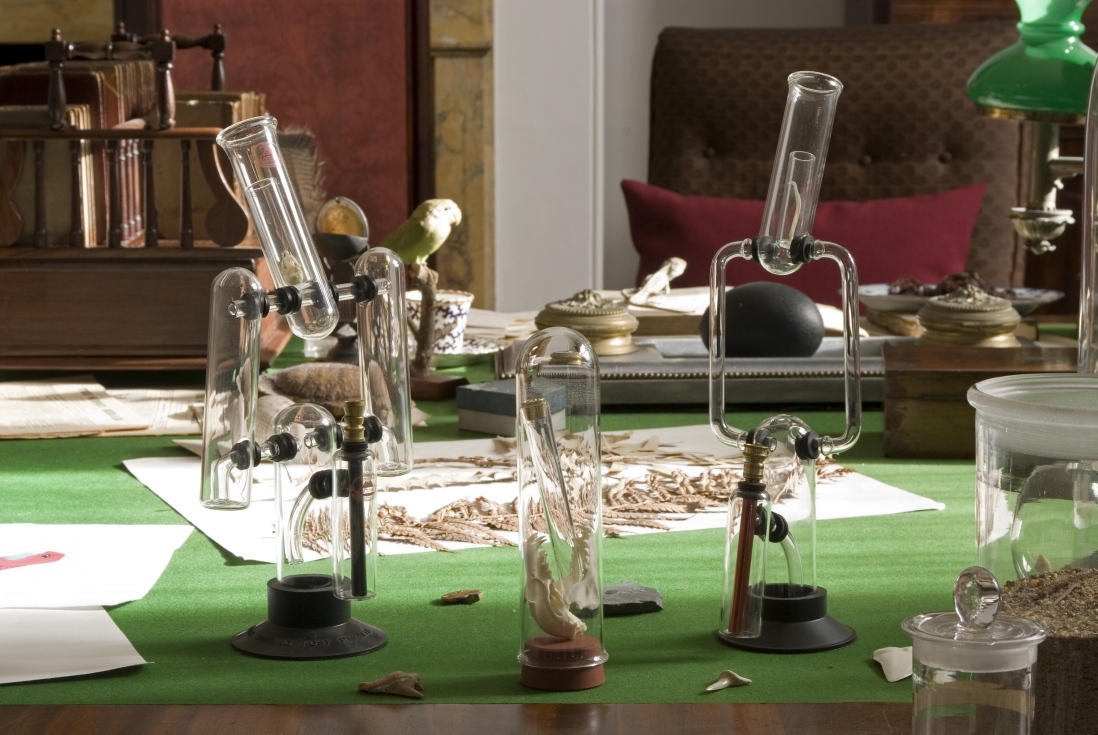 Glass objects that a 19th century specimen collector would have used