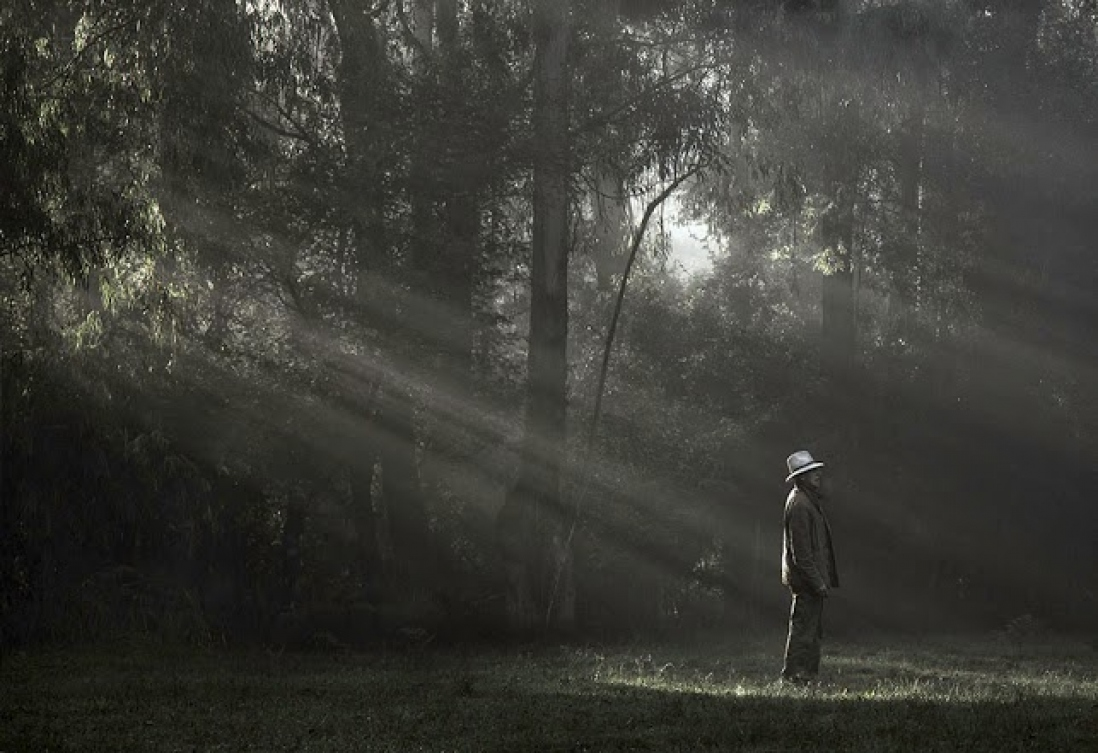 Stylised photo, mid shot of man in suit and white hat with sunbeams peaking through the trees