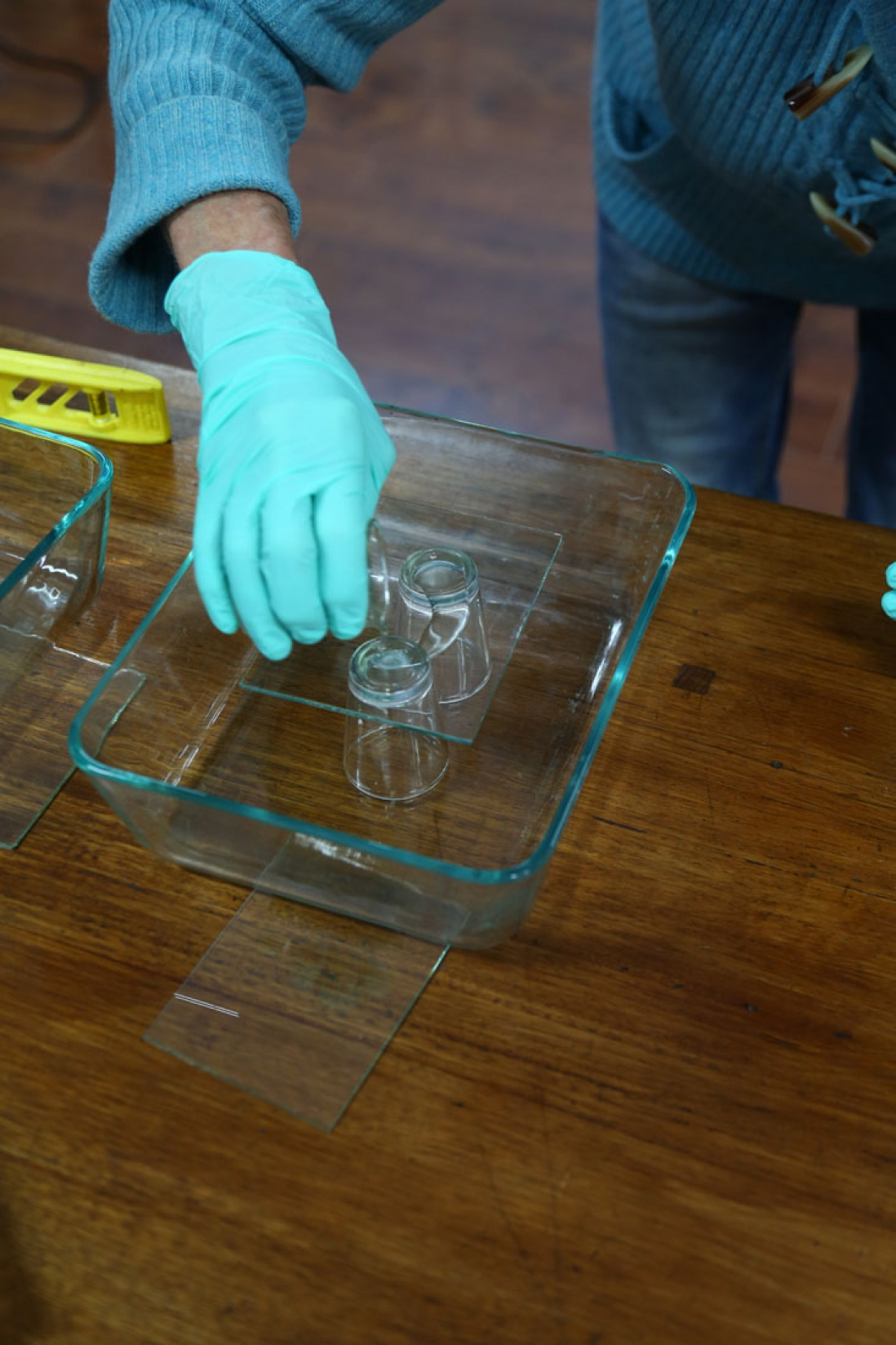 Blue gloved hand working with glass plates.