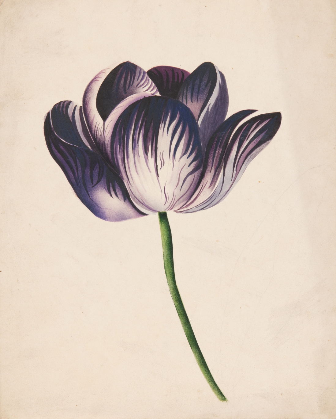 Flower study poonah painting