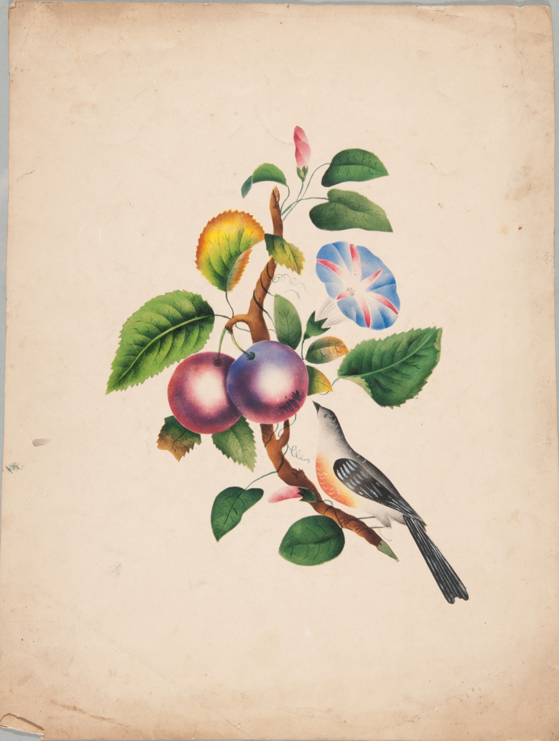 Bird and fruiting tree poonah painting