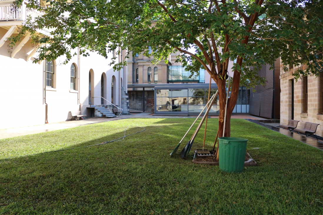 The mint lawn in the courtyard after autumn renovations