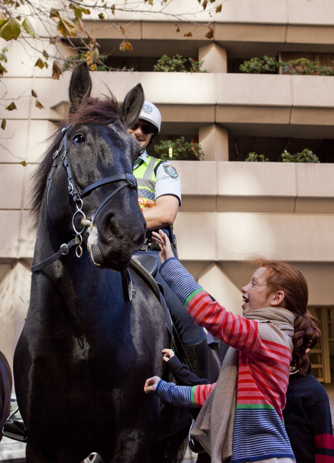 NSW Mounted Policeman Rob Hyde on Troop Horse Rommel with Charlotte outside the Justice and Police Museum.