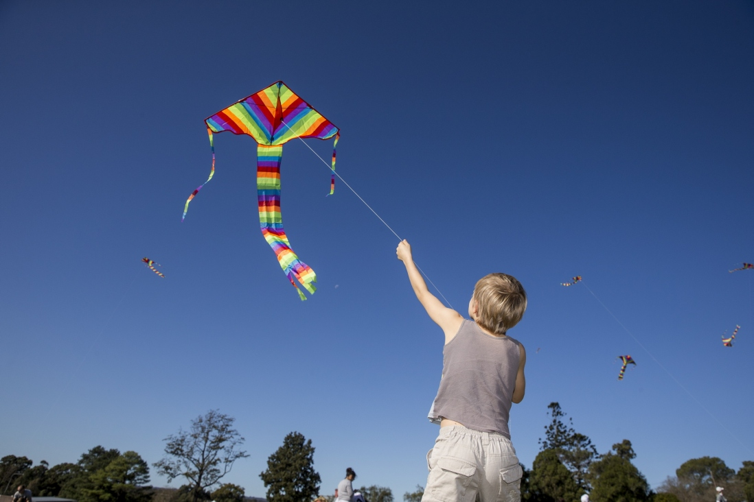 Boy flying a kite at the Toy Festival