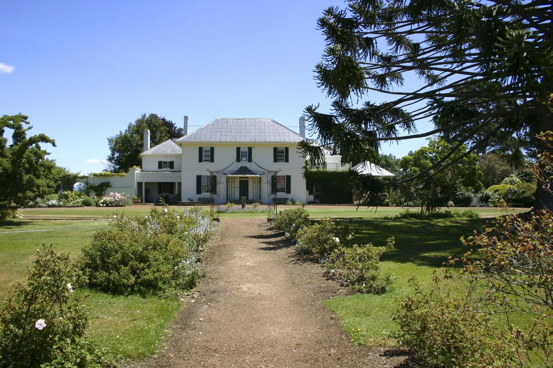 Two storey white building standing at the end of a gravel path through a grassy garden with a large bunya tree overhanging on the right.
