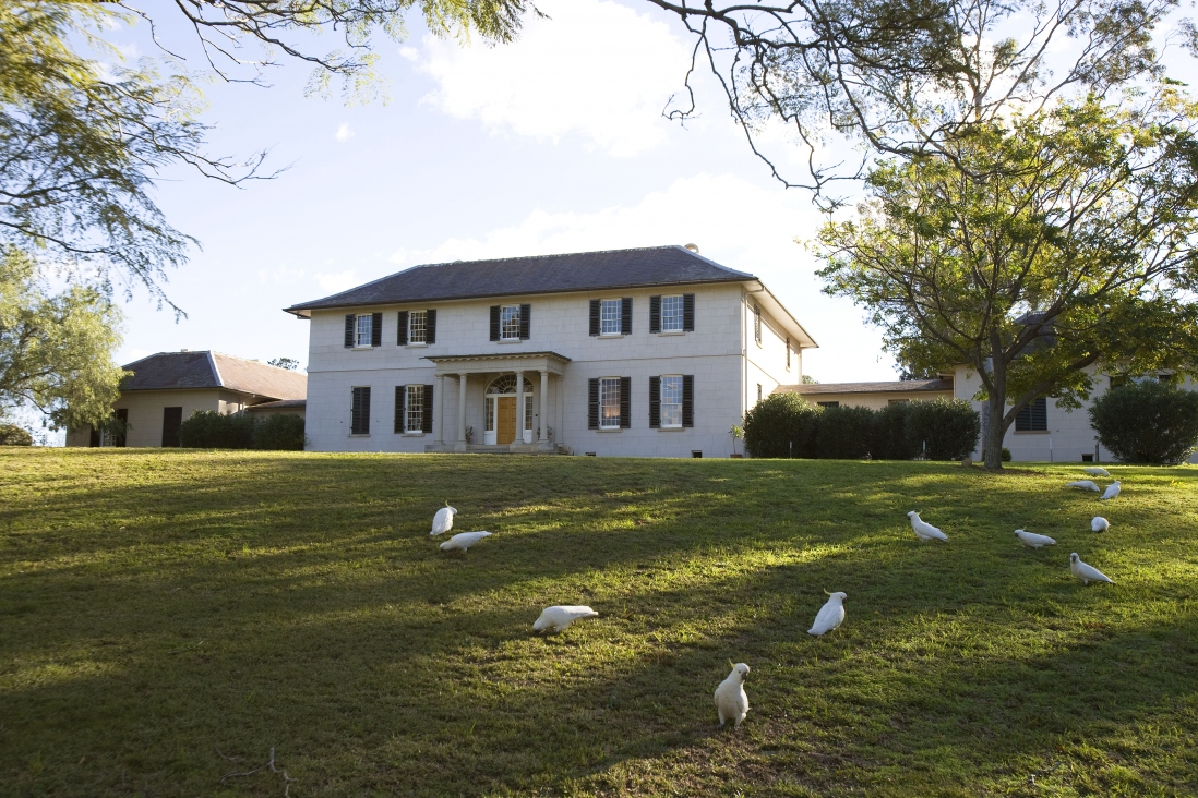 two storey white building perched on a grassy hillside with cockatoos feeding on the lawn in the foreground.
