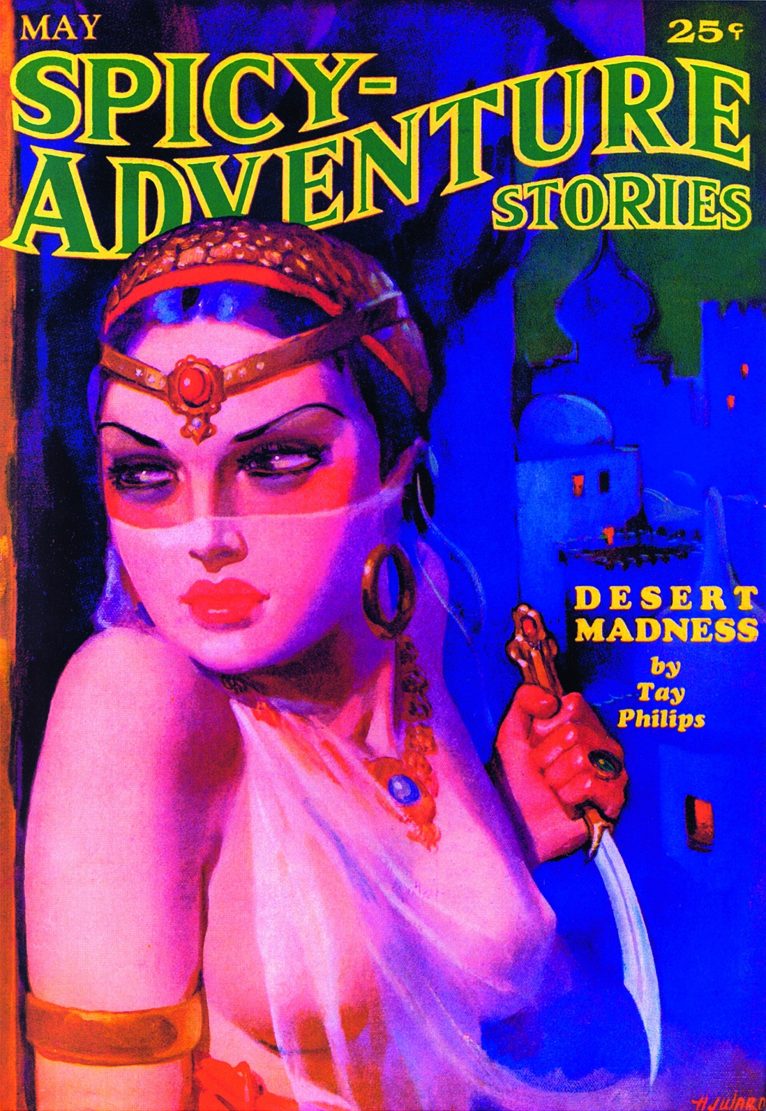 Illustrated book cover with exotic image of woman in Arabian style clothing holding a knife.