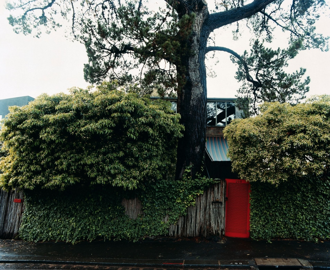This is a colour photograph of a timber fence with a bright red gate. A house can be glimpsed between leafy trees and a tall pine tree