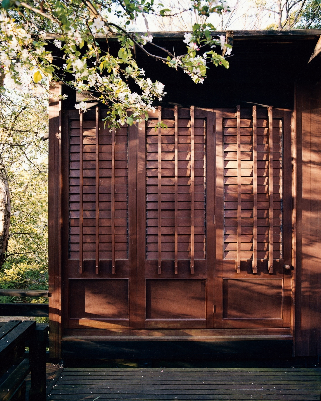 This is a photograph of a dark timber slatted exterior screen sitting on a deck with tree branches in shot on the left side
