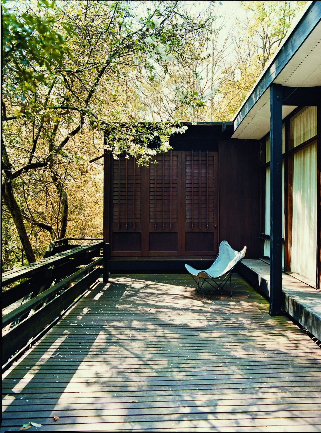 This is a photograph of a long timber deck with a timber slatted screen at one end. A 1950s style white chair is positioned at one end, and tree branches create dappled light.