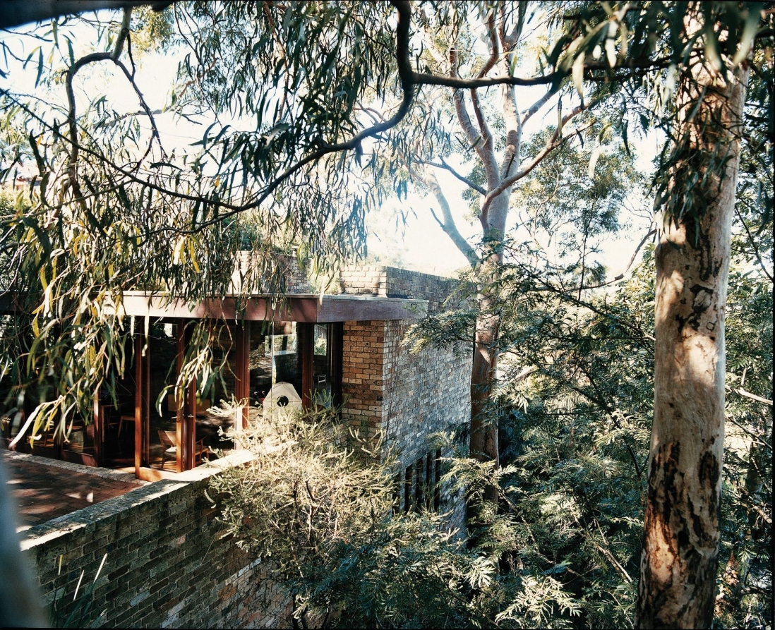 This is a photograph of a light coloured brick house set among native plants and trees