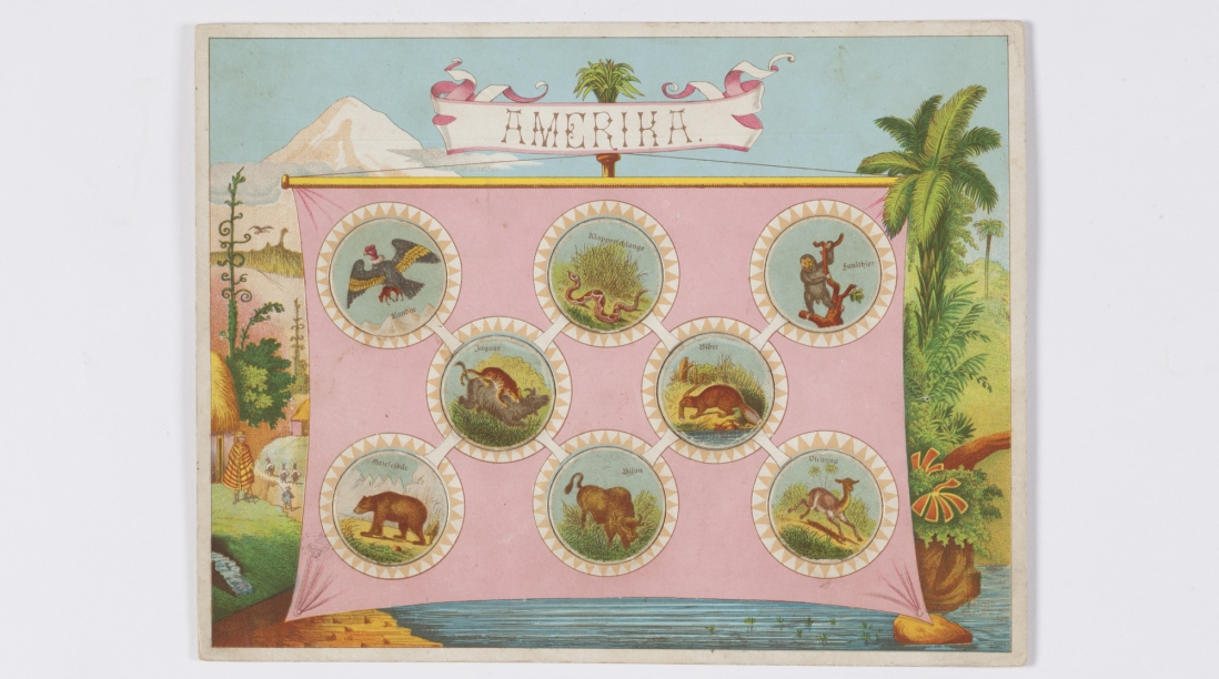 Zoological Lotto: Amerika board