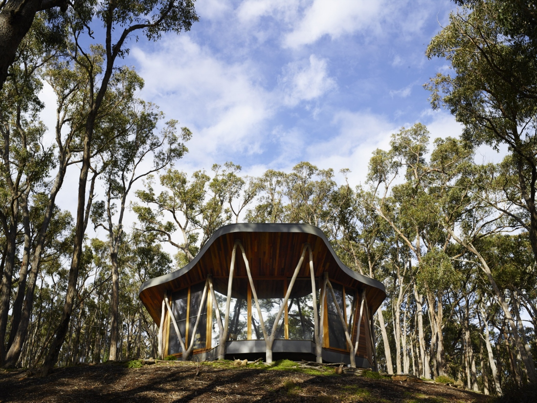 Small wooden house set in Australian bush