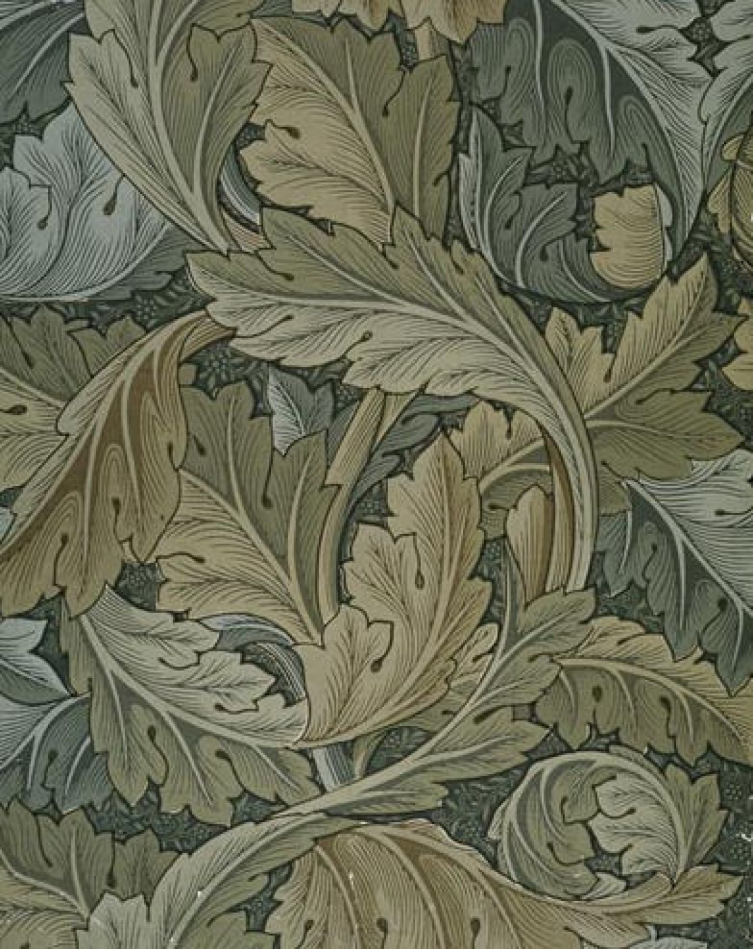 varying colours of green acanthus leaves overlapping to create a wallpaper.