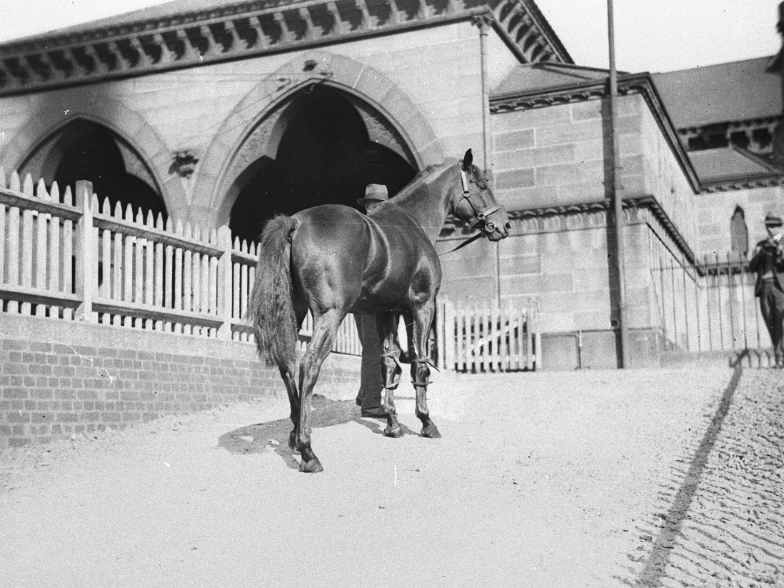 Man leading horse up to building.