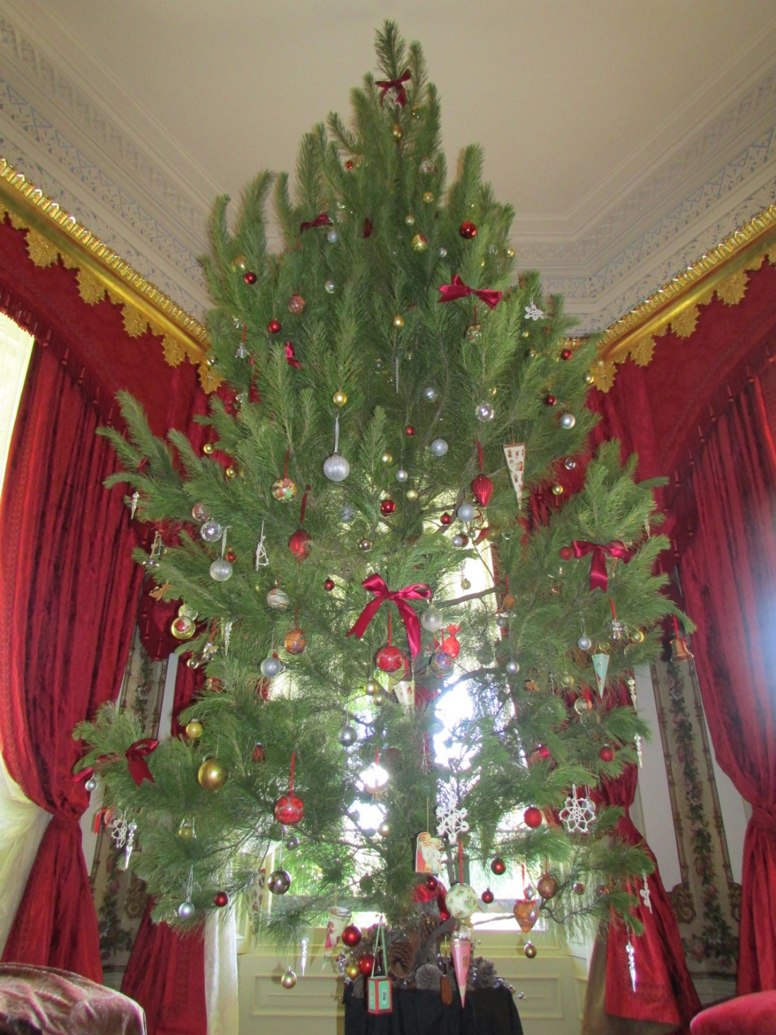 Top of tree showing ornaments.