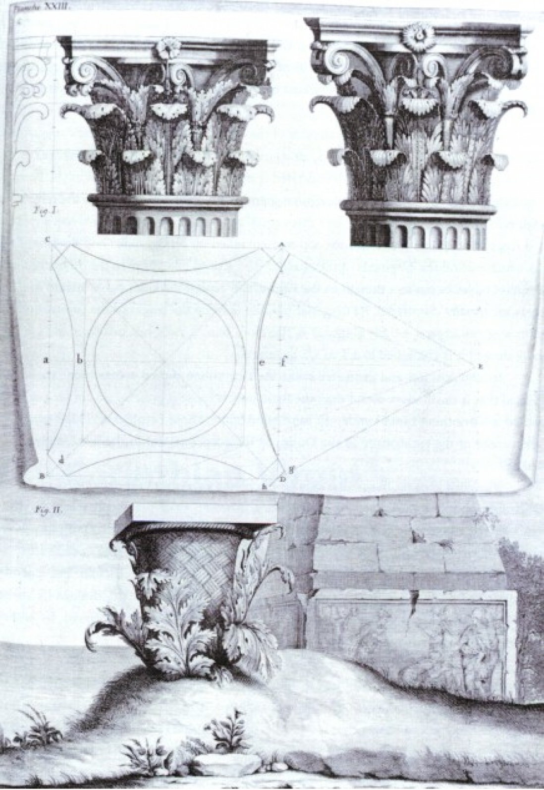 Image that shows acanthus growing around a basket which is placed on a grave, above this is a drawing of a capital featuring acanthus leaves. Perhaps it's origin