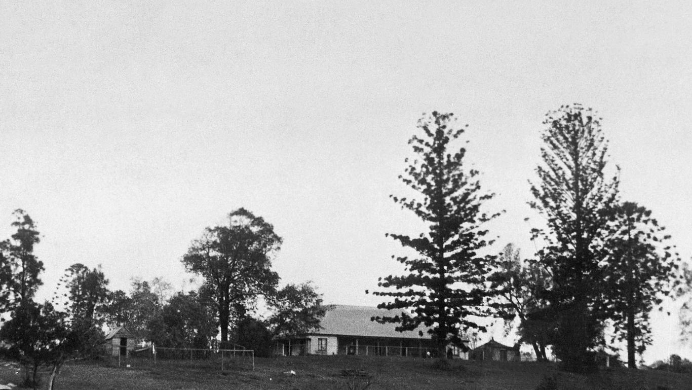 Black and white skyline photo of trees and house.