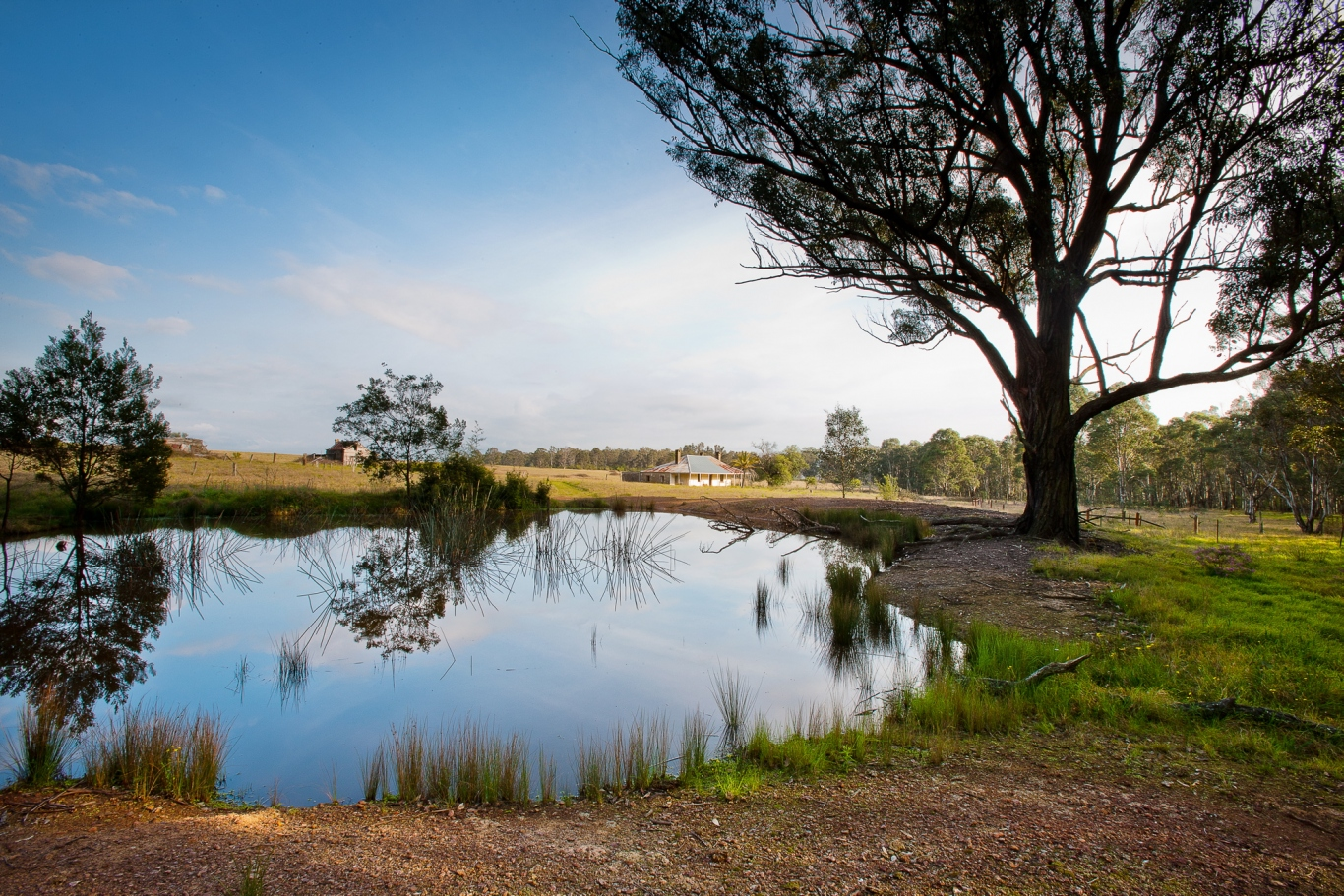 View across dam and paddocks to rural homestead.