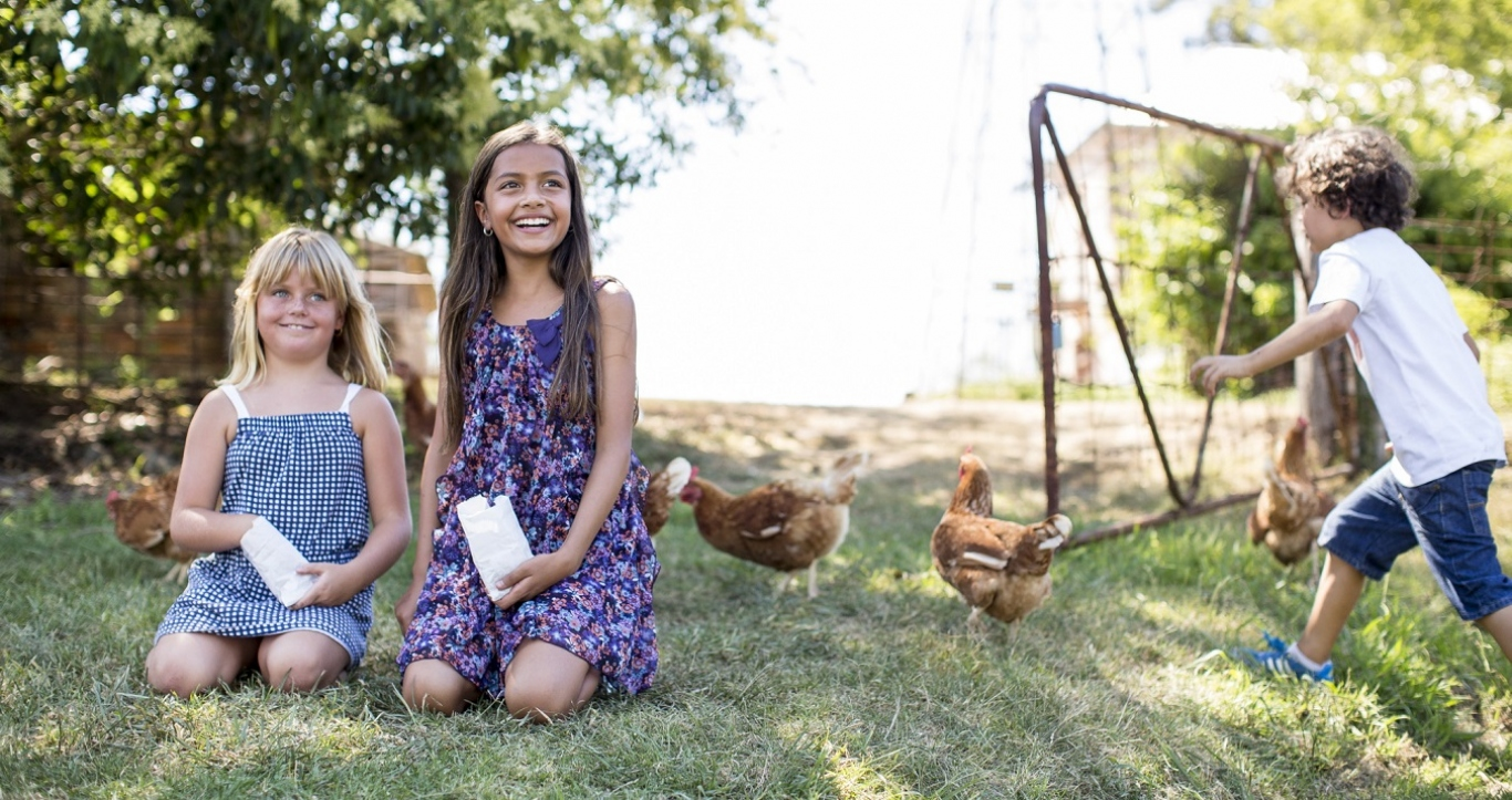 Children with chickens in outdoor setting.