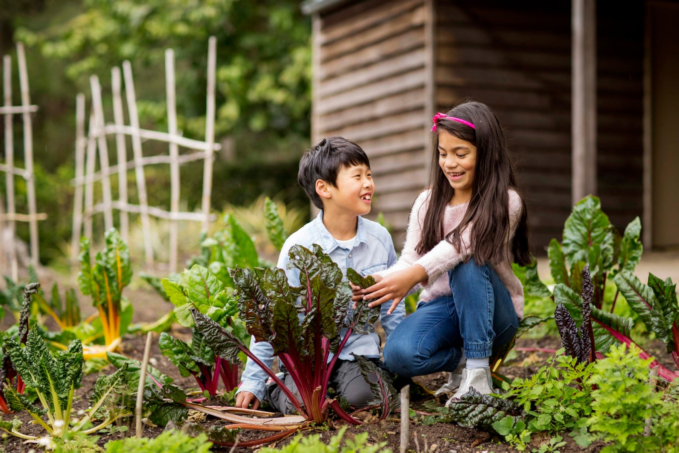 Two children crouching down among vegetables in the kitchen garden.
