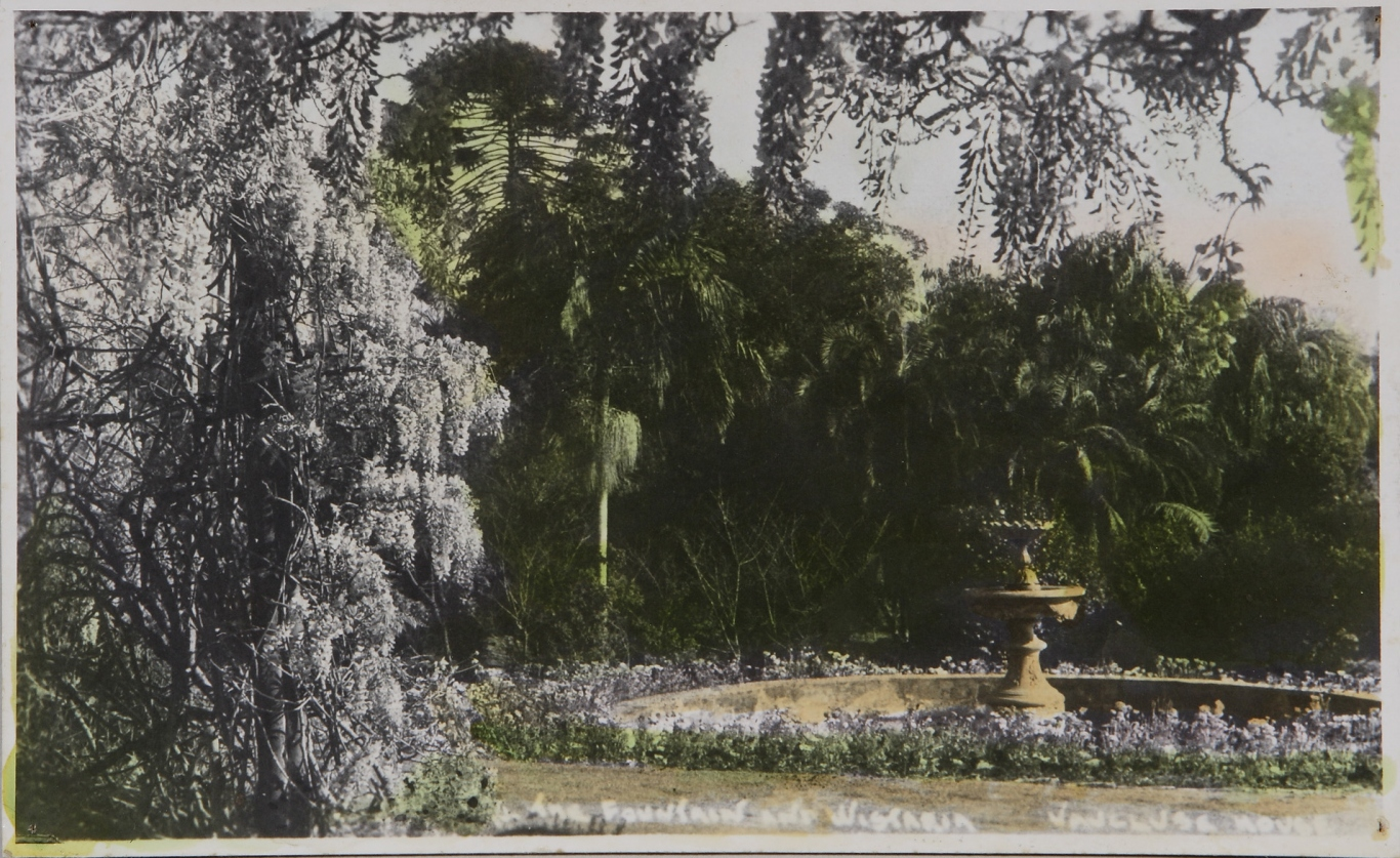 Hand-coloured postcard of verandah covered in purple wisteria