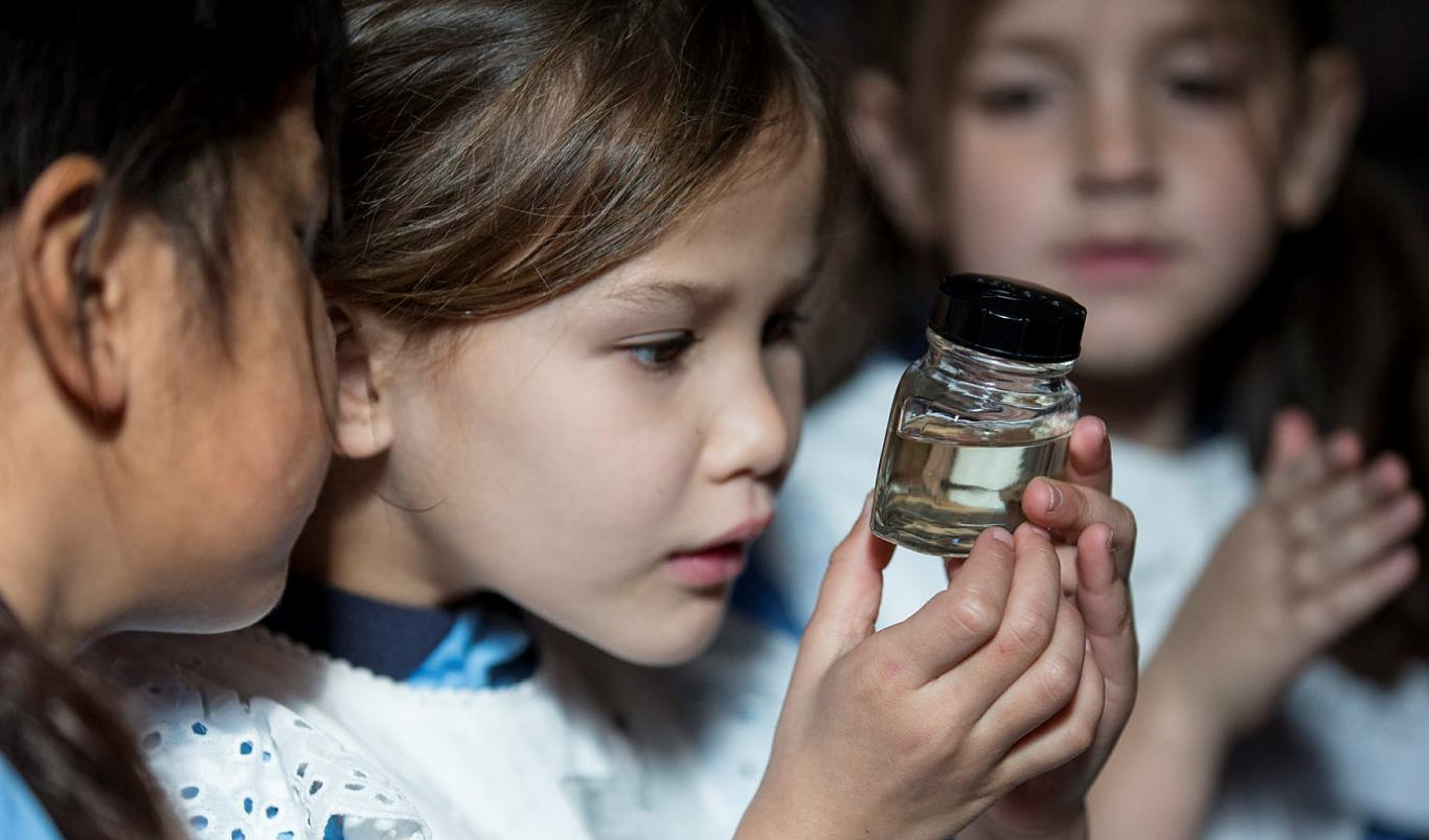 Students study a specimen jar containing a silkworm in the schoolhouse at Rouse Hill House and Farm.