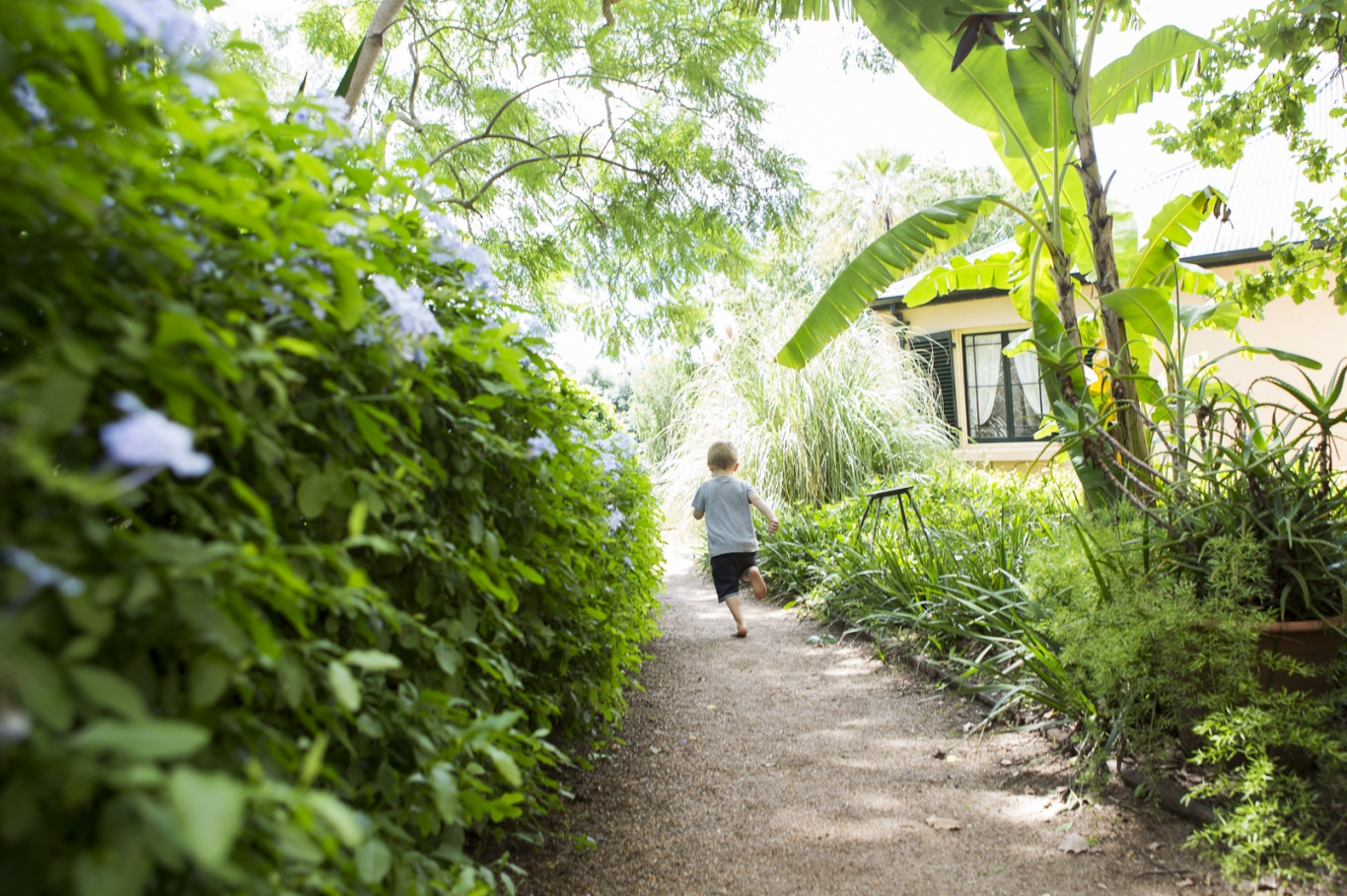 Boy running up a gravel path through leafy green garden towards house.