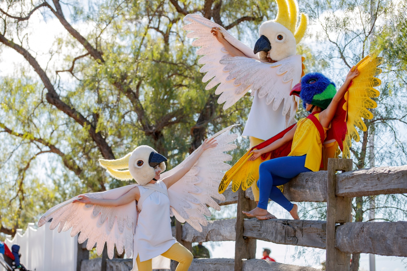 Performers dressed as native Australian birds at Rouse Hill House & Farm