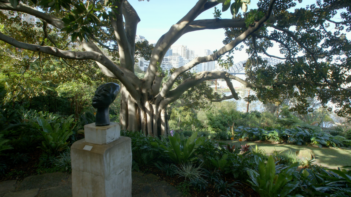 Image of garden with harbour in background.