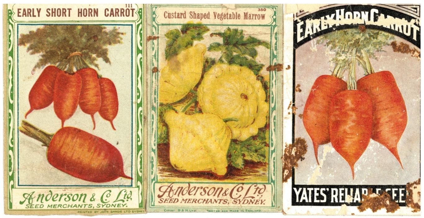 Three seed packet covers.