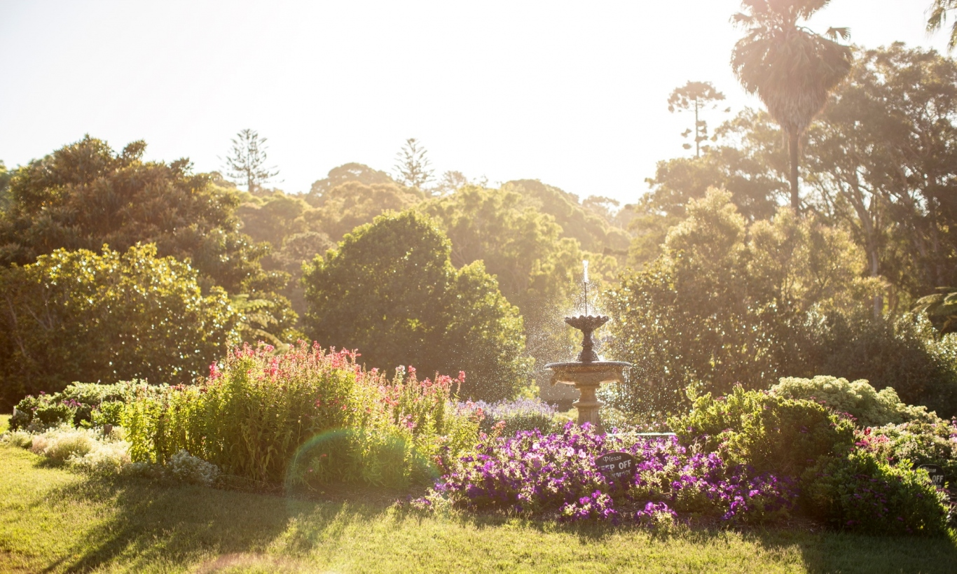 Photograph of pleasure garden and fountain at Vaucluse House