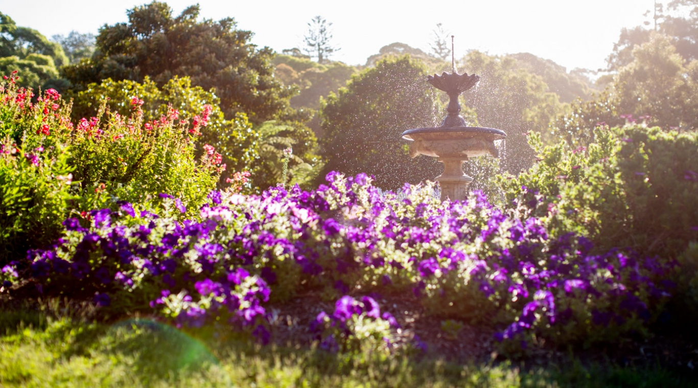 Garden and fountain at Vaucluse House