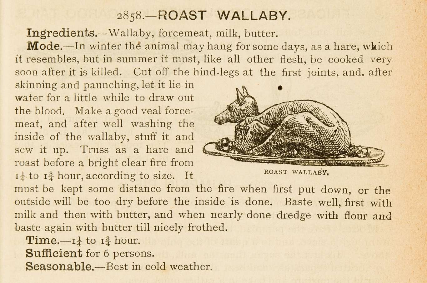 Recipe from old book with illustration of roast wallaby in dish.
